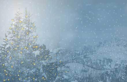 Julzeit